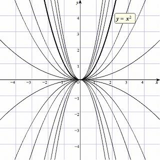 y=ax^2.jpg